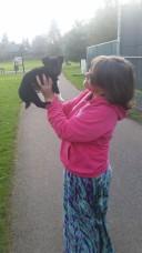Found a cutie on a Salem walk